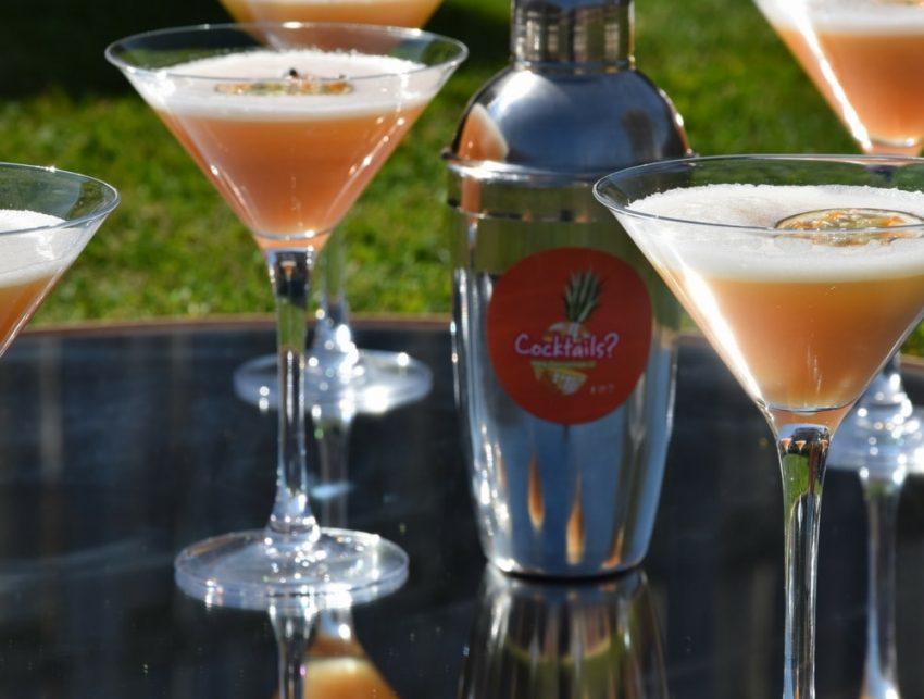 cocktails-service-feest-bedrijfsfeest-www.dancarinas.nl-themafeest-5-min