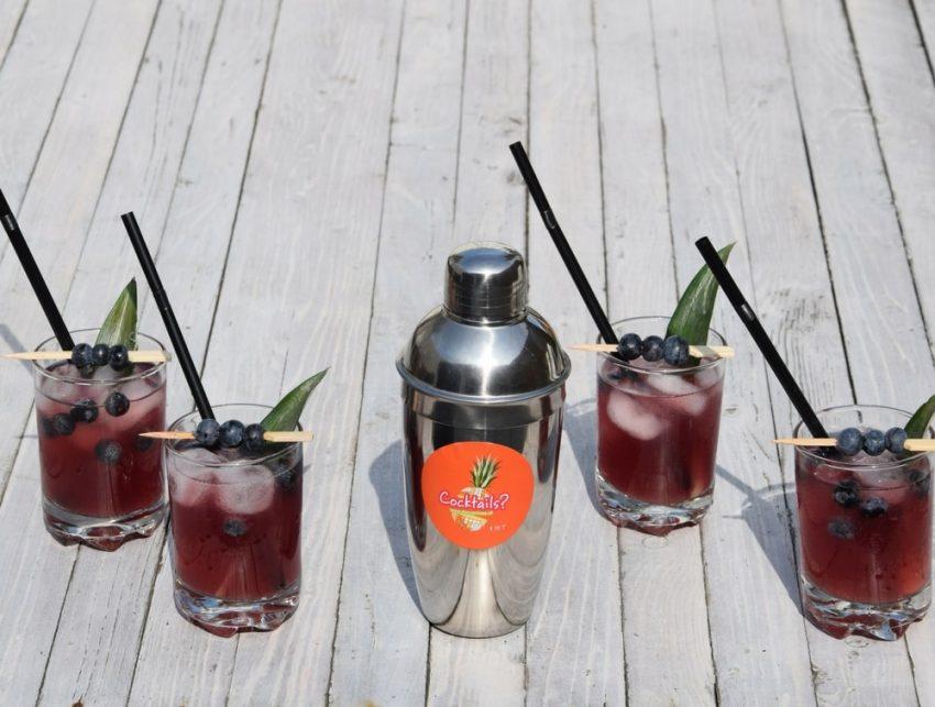 cocktails-service-feest-bedrijfsfeest-www.dancarinas.nl-themafeest-6-min