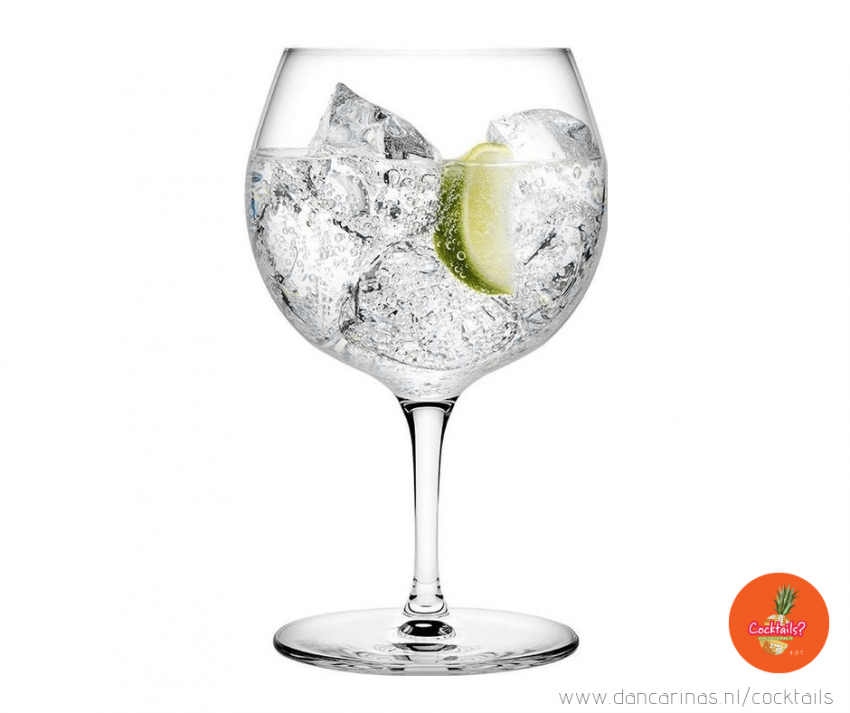 www.dancarinas.nl-gin-tonic-cocktails