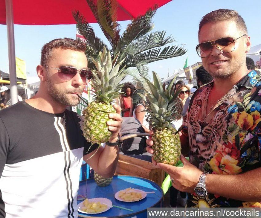 www.dancarinas.nl-childsplay-djchuckie-ananas-cocktails-kwaku-zomer-feest-mobiele-bar-roze-zaterdag-gaypride-pride-regenboog